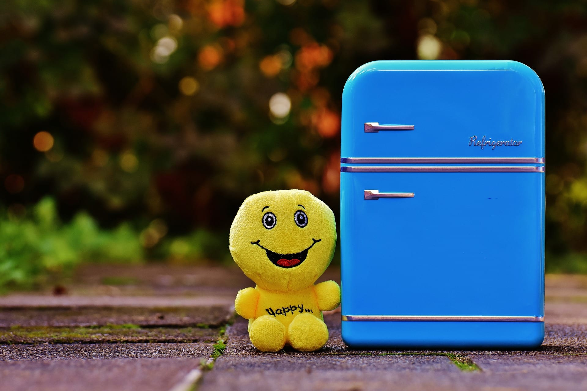 Smiling doll next to blue fridge